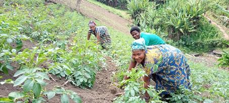 Adventsactie 2020 voor akkerbouw gevluchte zinnen in Congo